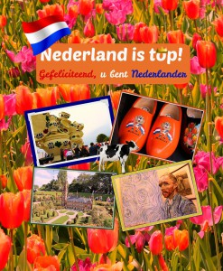Verkleind - cover Nederland is top - definitief 01-2019
