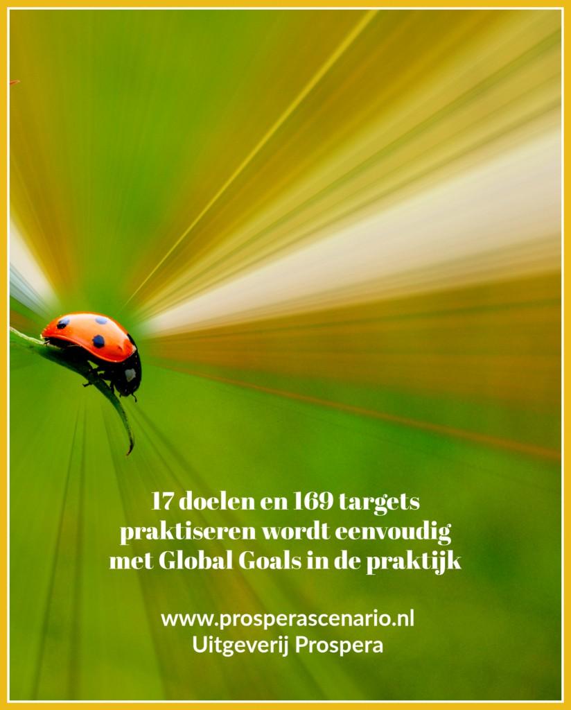 Het lieveheersbeestje is de mascotte van Global Goals in de praktijk.