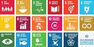 duurzame-ontwikkelingsdoelen