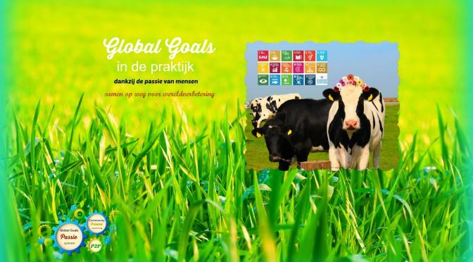 Release Global Goals in de praktijk